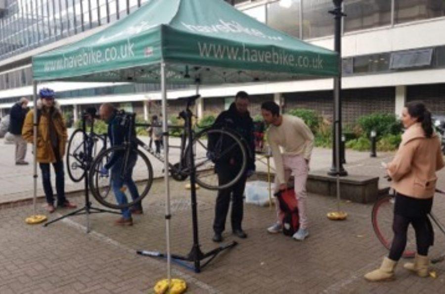 Cycle Maintenance & Posture Training