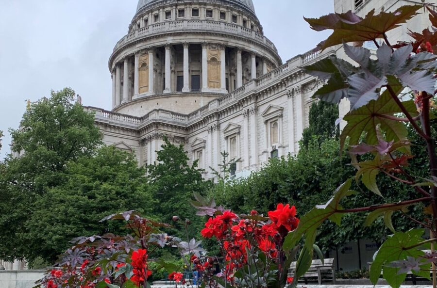 Image of St Paul's Cathedral Festival Gardens